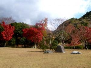 米泉湖へ紅葉狩り