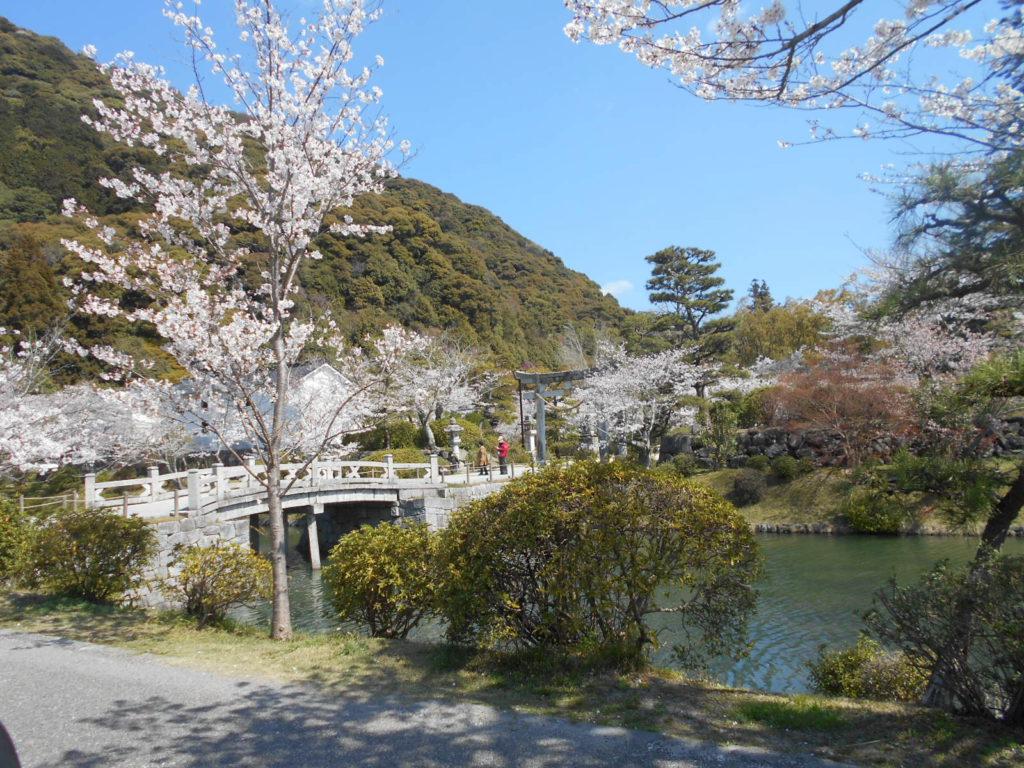 ❀桜散歩&ドライブ❀