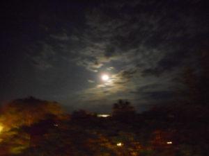 🌙プチお月見🌙